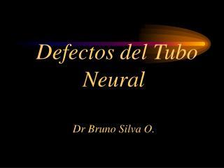 Defectos del Tubo Neural  Dr Bruno Silva O.