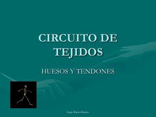 CIRCUITO DE TEJIDOS