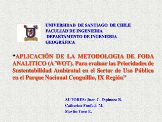 UNIVERSIDAD  DE SANTIAGO  DE CHILE   FACULTAD DE INGENIERIA  DEPARTAMENTO DE INGENIERIA GEOGR FICA