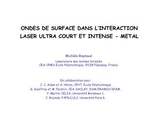ONDES DE SURFACE DANS L INTERACTION LASER ULTRA COURT ET INTENSE - METAL