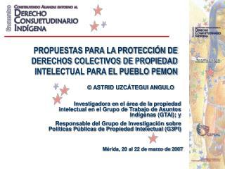 PROPUESTAS PARA LA PROTECCI N DE DERECHOS COLECTIVOS DE PROPIEDAD INTELECTUAL PARA EL PUEBLO PEMON