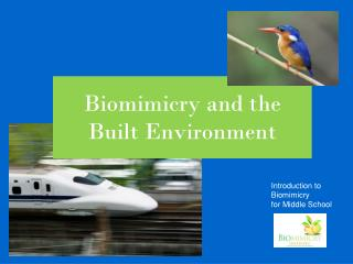 Biomimicry and the