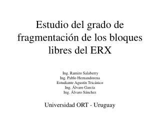 Estudio del grado de fragmentaci n de los bloques libres del ERX     Ing. Ramiro Salaberry Ing. Pablo Hernandorena  Estu