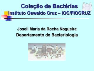 Cole  o de Bact rias   Instituto Oswaldo Cruz   IOC