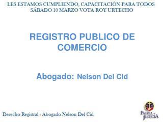 REGISTRO PUBLICO DE COMERCIO  Abogado: Nelson Del Cid