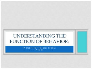 Functional Behavioral Assessment: Building a Systemic Response to Problem Behavior