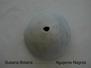 Susana Botana                     Agujeros Negros