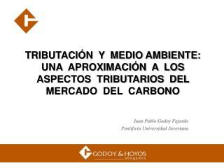 TRIBUTACI N  Y  MEDIO AMBIENTE:  UNA  APROXIMACI N  A  LOS  ASPECTOS  TRIBUTARIOS  DEL  MERCADO  DEL  CARBONO