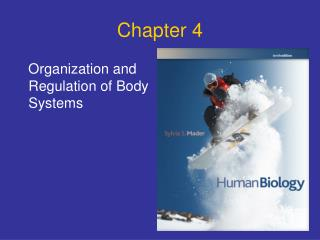 Organization and Regulation of Body Systems