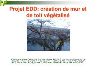 Projet EDD: cr ation de mur et de toit v g talis