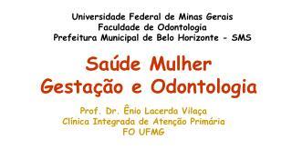 Universidade Federal de Minas Gerais Faculdade de Odontologia Prefeitura Municipal de Belo Horizonte - SMS