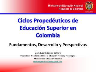 Ciclos Proped uticos de Educaci n Superior en Colombia
