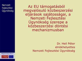 Az EU t mogat sb l megval sul  k zbeszerz si elj r sok saj toss gai, a Nemzeti Fejleszt si  gyn ks g szerepe a k zbeszer