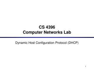CS 4396  Computer Networks Lab