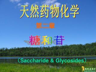 Saccharide  Glycosides