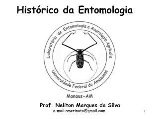 Prof. Neliton Marques da Silva             e-mail:nmerinatogmail