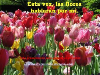 Esta vez, las flores                      hablar n por m .