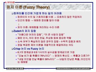 Fuzzy Theory