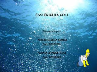 ESCHERICHIA COLI   Presentado por:   ERIKA RIVERA GOMEZ Cod: 07351001  LAURA ARAQUE DIAZ Cod: 07351020