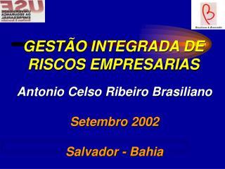 GEST O INTEGRADA DE RISCOS EMPRESARIAS