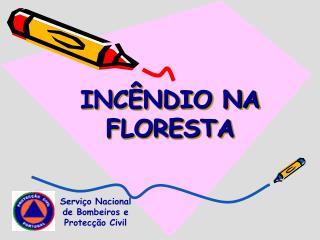 INC NDIO NA FLORESTA
