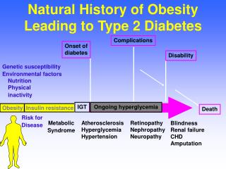 Natural History of Obesity Leading to Type 2 Diabetes