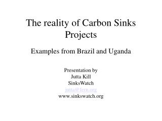 The reality of Carbon Sinks Projects