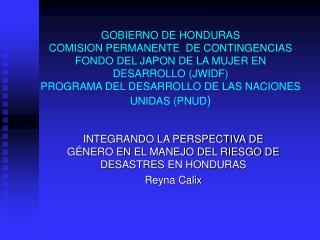 GOBIERNO DE HONDURAS COMISION PERMANENTE  DE CONTINGENCIAS FONDO DEL JAPON DE LA MUJER EN DESARROLLO JWIDF PROGRAMA DEL