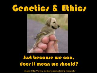 Genetics  Ethics