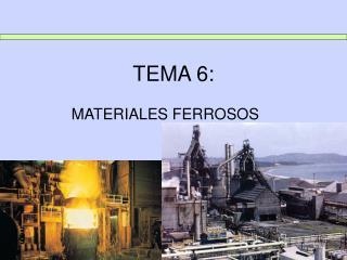 TEMA 6: