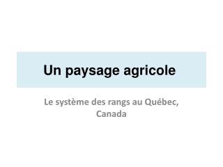 Un paysage agricole