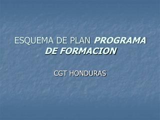 ESQUEMA DE PLAN PROGRAMA DE FORMACION