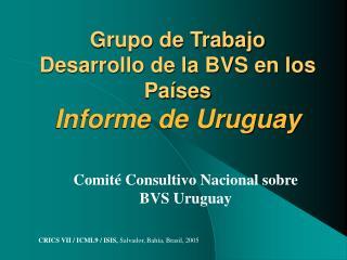 Grupo de Trabajo Desarrollo de la BVS en los Pa ses  Informe de Uruguay
