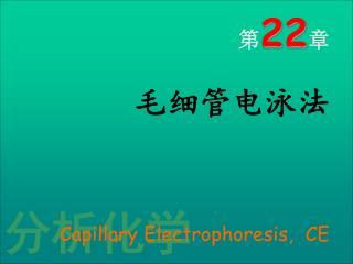 22         Capillary Electrophoresis,  CE