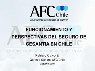 FUNCIONAMIENTO Y PERSPECTIVAS DEL SEGURO DE CESANTIA EN CHILE
