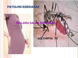 Malaria dalam kehamilan