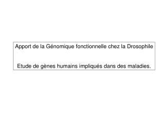 Apport de la G nomique fonctionnelle chez la Drosophile   Etude de g nes humains impliqu s dans des maladies.