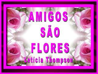 AMIGOS  S O FLORES