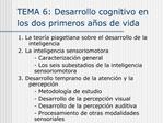 TEMA 6: Desarrollo cognitivo en los dos primeros a os de vida