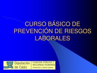 CURSO B SICO DE PREVENCI N DE RIESGOS LABORALES