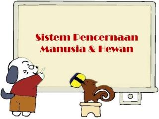 Sistem Pencernaan Manusia & Hewan