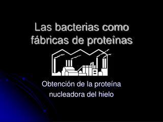 Las bacterias como f bricas de prote nas