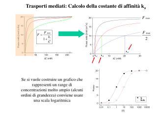 Se si vuole costruire un grafico che rappresenti un range di concentrazioni molto ampio alcuni ordini di grandezza convi