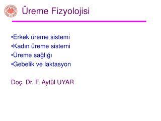 reme Fizyolojisi