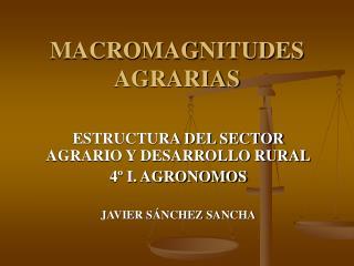 MACROMAGNITUDES AGRARIAS