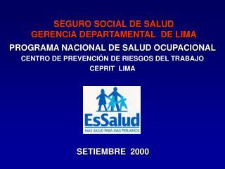 SEGURO SOCIAL DE SALUD GERENCIA DEPARTAMENTAL  DE LIMA