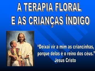 A TERAPIA FLORAL  E AS CRIAN AS  NDIGO