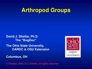 Arthropod Groups