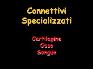 Connettivi Specializzati  Cartilagine Osso Sangue