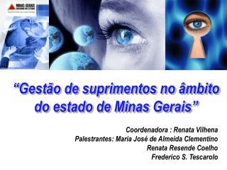 Gest o de suprimentos no  mbito do estado de Minas Gerais
